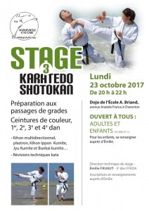 stage karaté adultes